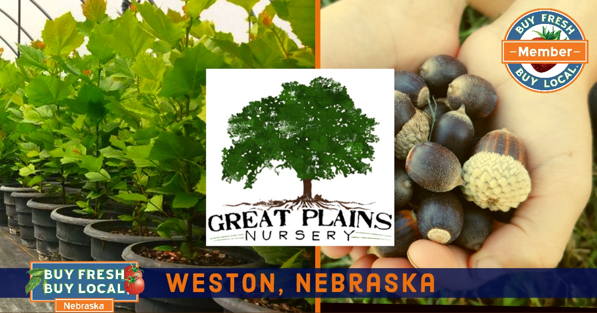 promotional image for Great Plains Nursery
