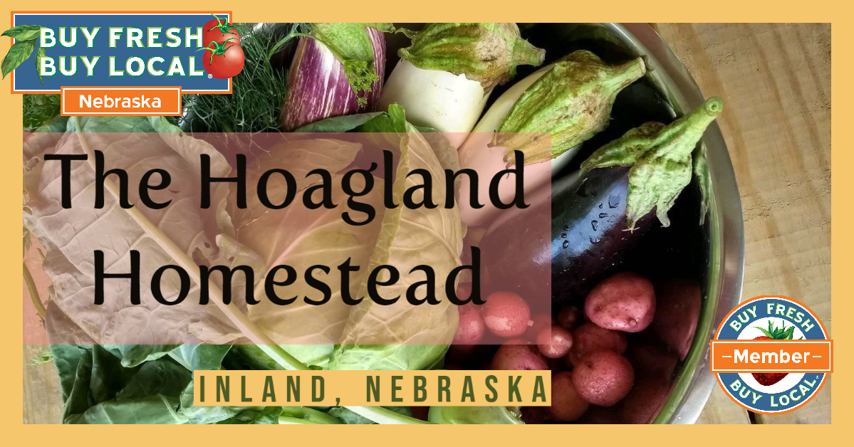 The Hoagland Homestead Inland Nebraska
