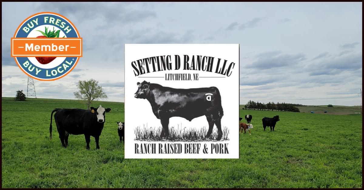 Setting D Ranch Litchfield NE