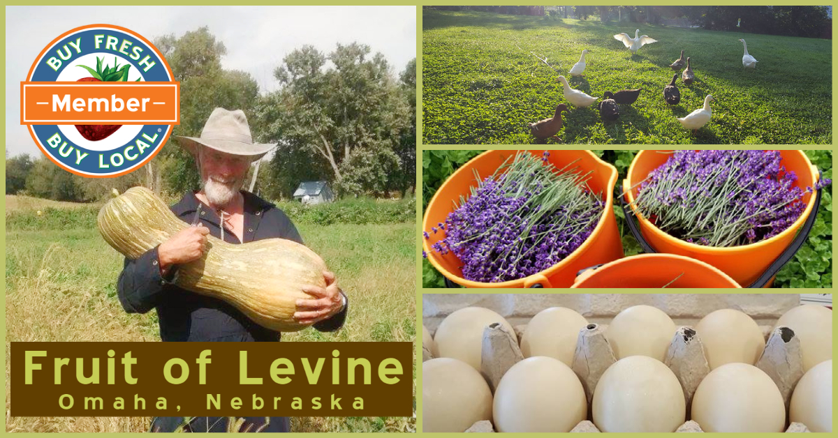 Fruit of Levine Omaha Nebraska